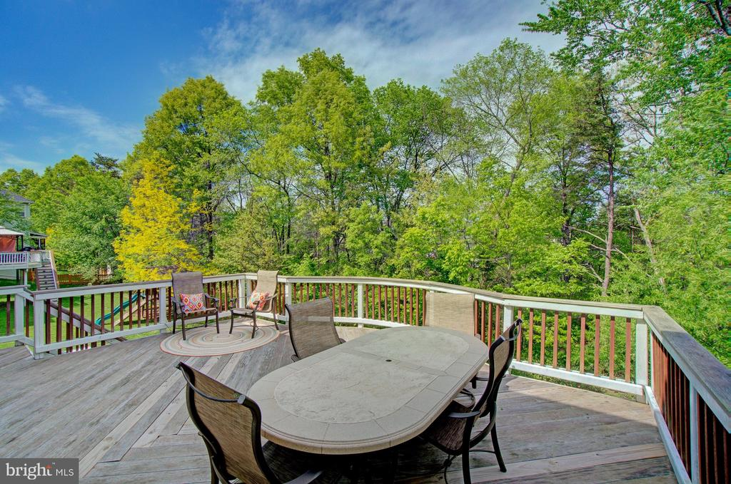 Beautiful Tree Lined Property - 42834 MEANDER CROSSING CT, BROADLANDS