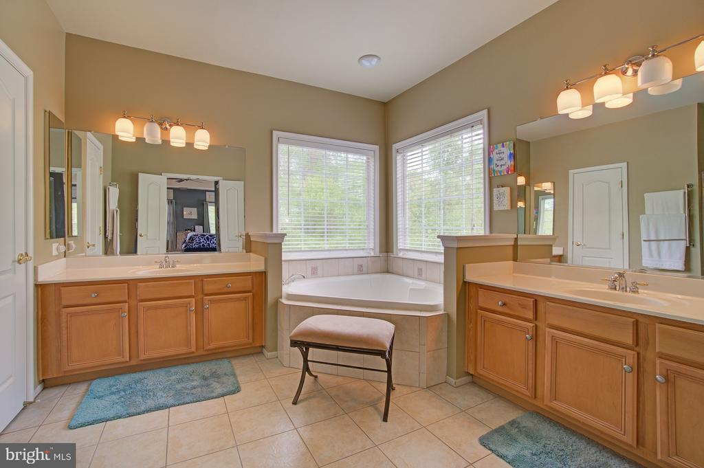 Master Bath with Soaking Tub &  Separate Shower - 42834 MEANDER CROSSING CT, BROADLANDS