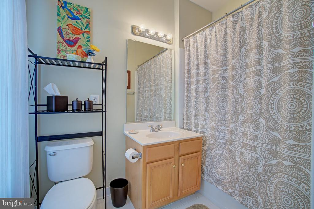 Ensuite Full Bath - 42834 MEANDER CROSSING CT, BROADLANDS