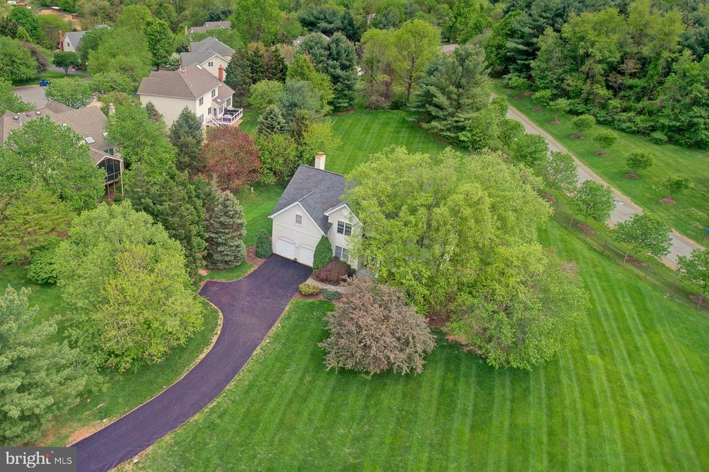 Private driveway. Ultimate in privacy and peace. - 10753 BLAZE DR, RESTON