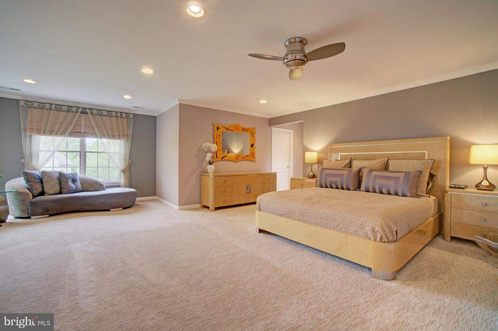 Master Suite w/ Sitting Area, recessed lights, fan - 10753 BLAZE DR, RESTON