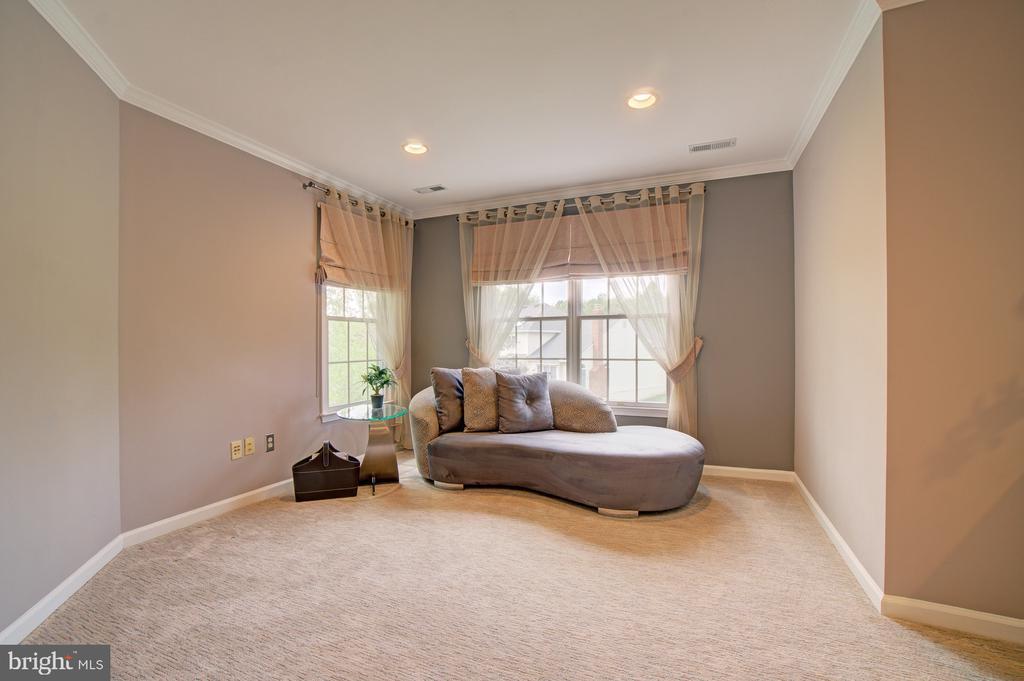 ~Master Sitting Room w/ more pretty views. - 10753 BLAZE DR, RESTON