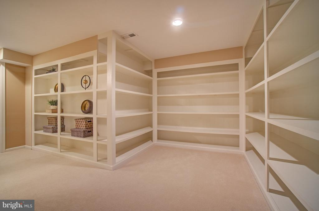 Storage Room and these great built in book shelves - 10753 BLAZE DR, RESTON