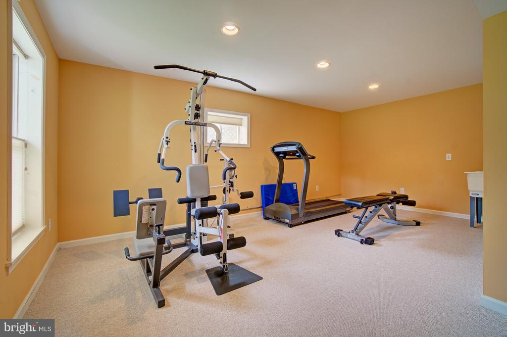 Bonus Room used as a gym. 2 large windows & closet - 10753 BLAZE DR, RESTON