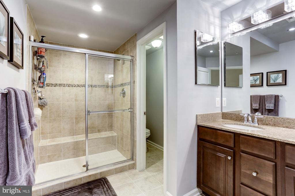 Luxurious Master Bath - 3814 HANSBERRY CT NE, WASHINGTON