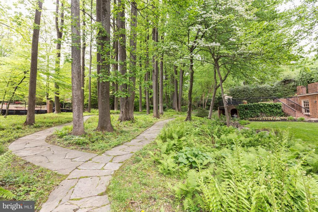 Backyard - 7709 CARLTON PL, MCLEAN