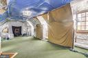 2nd Upper-Level Batting Cage - 7709 CARLTON PL, MCLEAN