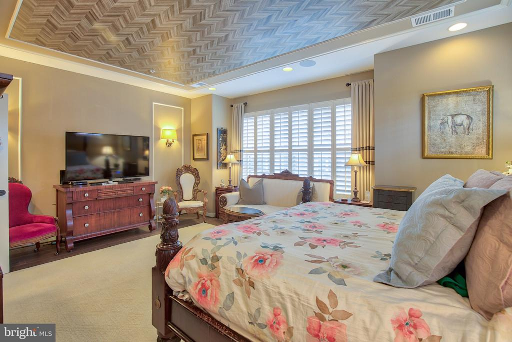 Master suite with coffered ceiling - 235 CRESCENT STATION TER SE, LEESBURG