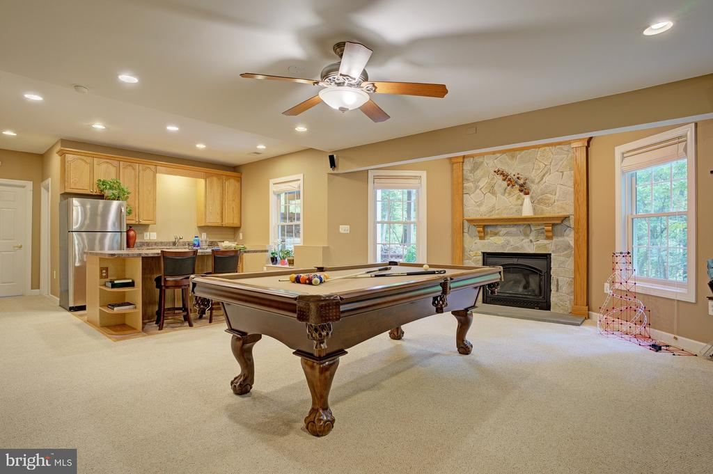 Large rec room with walkout to back yard - 1590 MONTMORENCY DR, VIENNA