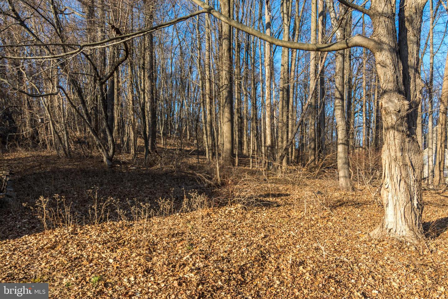 Land for Sale at Buckingham Township, Pennsylvania 18902 United States
