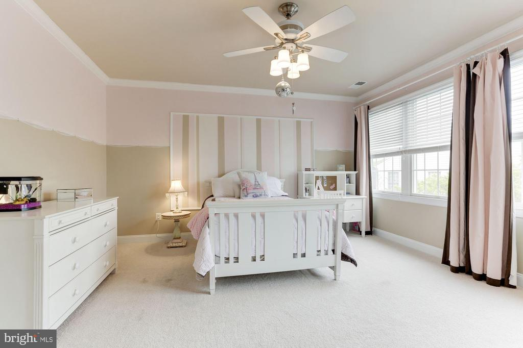 Bedroom 2 with Walk-In Closet - 19060 AMUR CT, LEESBURG