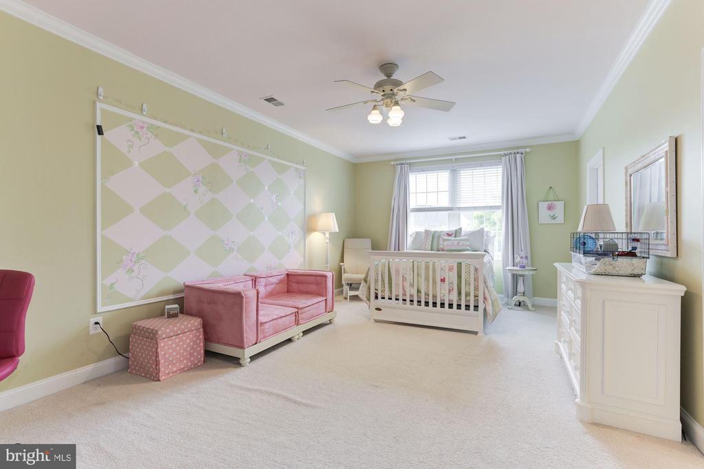 Bedroom 3 - 19060 AMUR CT, LEESBURG