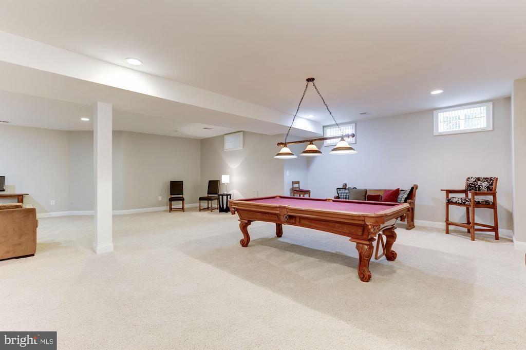 Lower Level Recreation Room - 19060 AMUR CT, LEESBURG