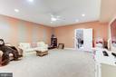Lower Level Playroom - 19060 AMUR CT, LEESBURG