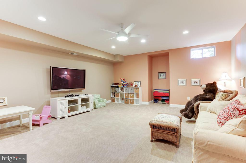 Lower Level Play Room - 19060 AMUR CT, LEESBURG