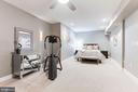 Lower Level Den/Bedroom 5 - 19060 AMUR CT, LEESBURG