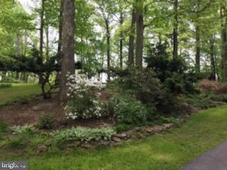 Lush plantings - 4345 BANBURY DR, GAINESVILLE