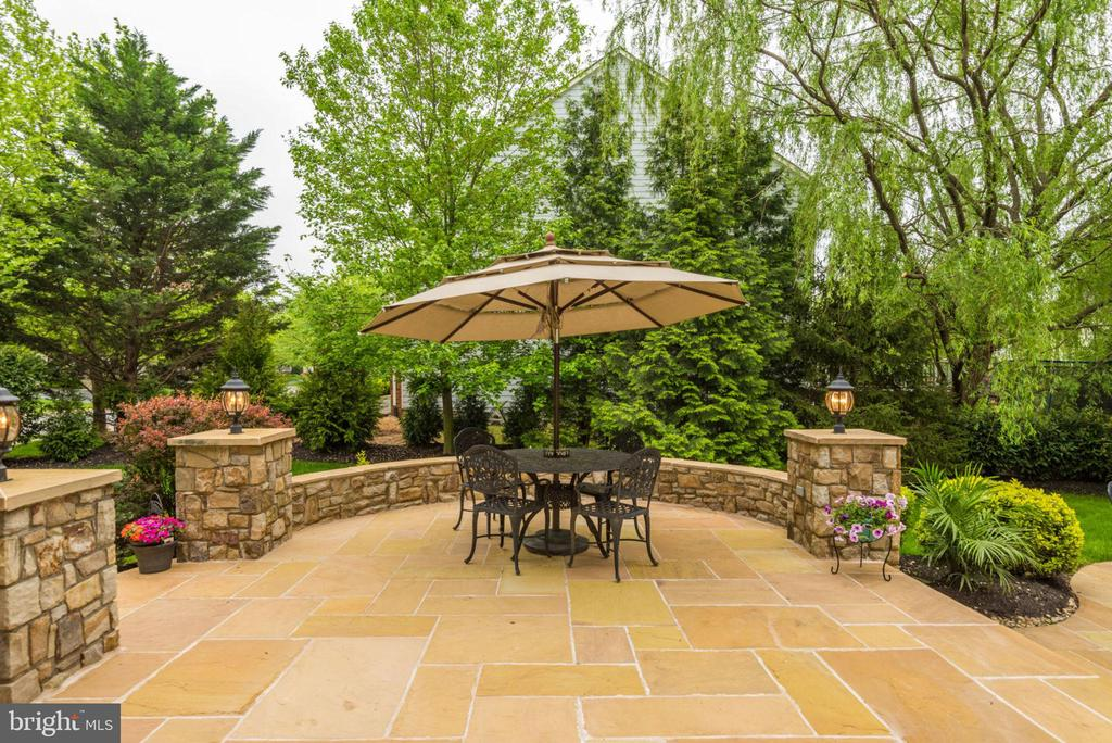Had to give you a peek at this great patio! - 42841 SANDHURST CT, BROADLANDS