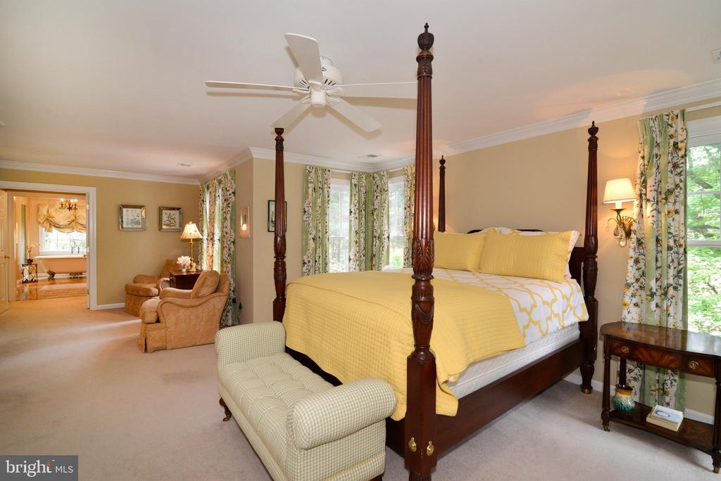 Fabulous owner's suite extends to multiple rooms. - 2403 SAGARMAL CT, DUNN LORING