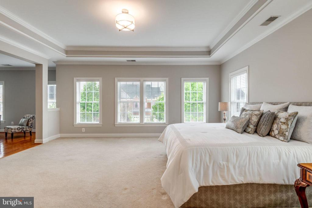 Tray Ceiling & Crown Molding accent this room - 42841 SANDHURST CT, BROADLANDS