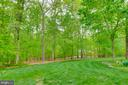 Level Rear Yard backs to trees - 16924 OLD SAWMILL RD, WOODBINE
