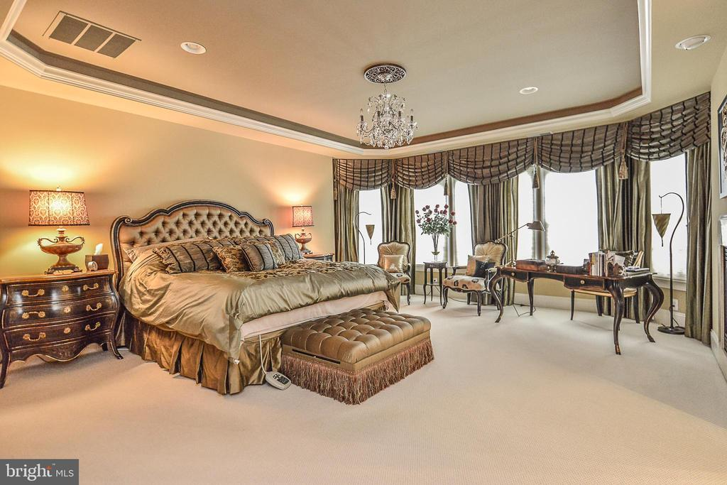 Light-Filled Master Bedroom w/ Tray Ceiling - 8421 FALCONE POINTE WAY, VIENNA