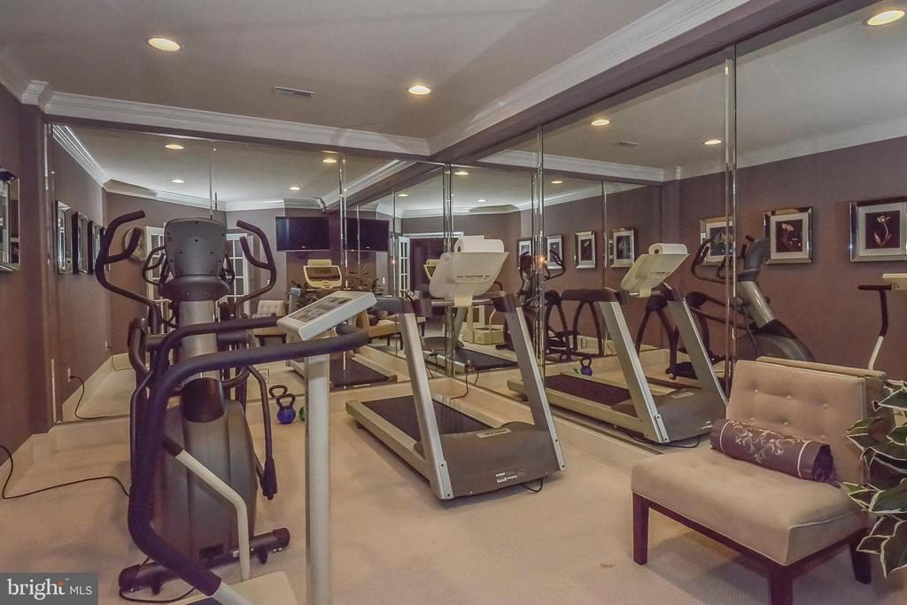 Lower Level Exercise Room - 8421 FALCONE POINTE WAY, VIENNA