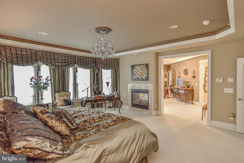 Master Bedroom w/ Fireplace - 8421 FALCONE POINTE WAY, VIENNA