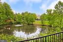 Community Pond - 4310-T CANNON RIDGE CT #92, FAIRFAX