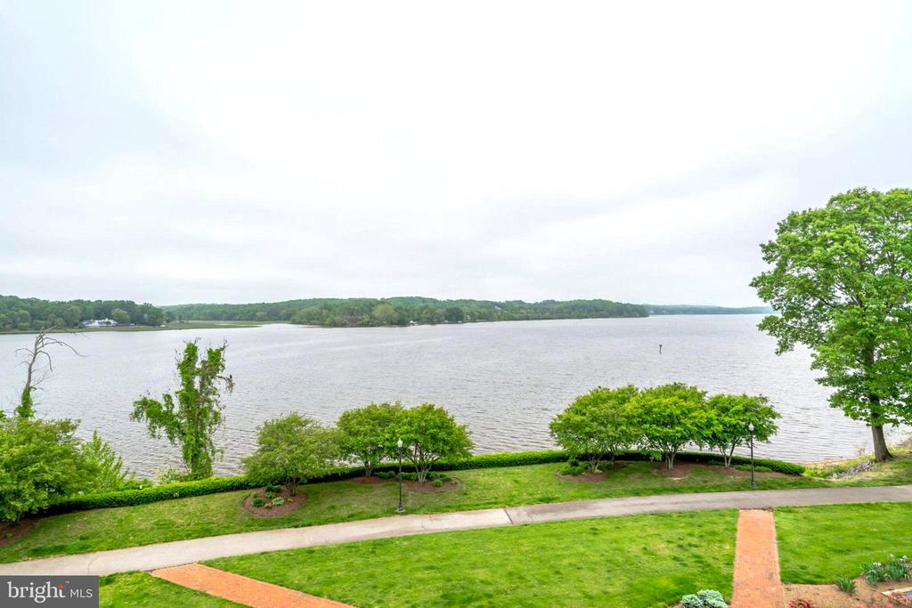 Looking out from Balcony - 440 BELMONT BAY DR #401, WOODBRIDGE