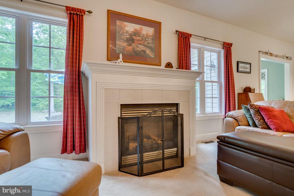 Gas fireplace - 85 TOWN AND COUNTRY DR, FREDERICKSBURG