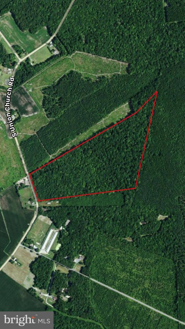 土地,用地 为 销售 在 埃伦代尔, 特拉华州 19968 美国