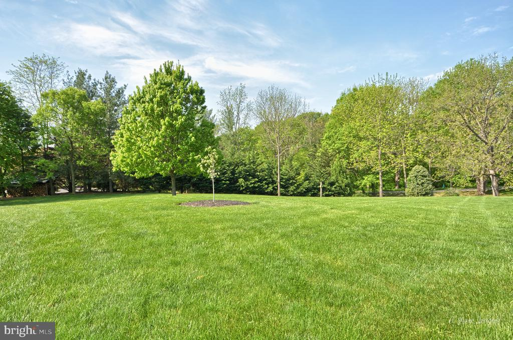 Surrounded by Foliage for privacy - 3613 WESTCHESTER CT, MIDDLETOWN