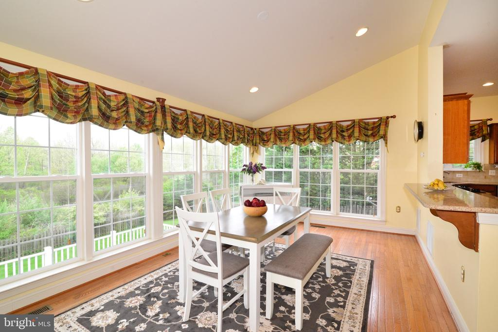 Nothing but windows here! - 1517 BROOKDALE CT, WINCHESTER
