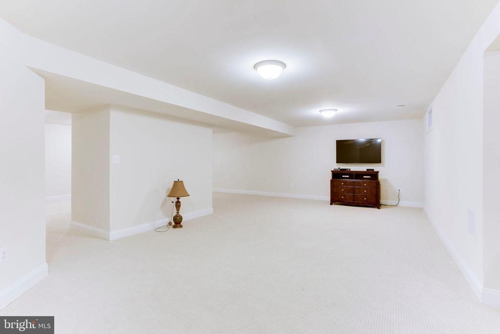 Rec Room - 42212 MADTURKEY RUN PL, CHANTILLY