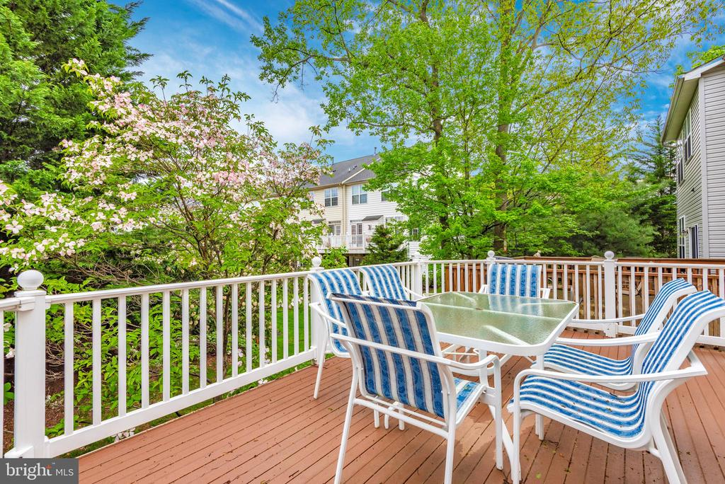 Summer's Coming! Chill Out on this AWESOME Deck! - 9404 SINGLETON PL, FREDERICK