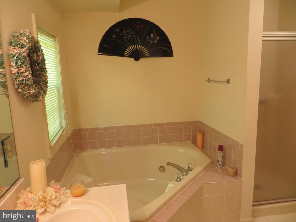 Jetted tub & separate Shower Master bath - 4021 LAKEVIEW PKWY, LOCUST GROVE