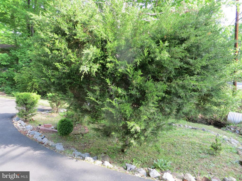 small front yard - 4021 LAKEVIEW PKWY, LOCUST GROVE