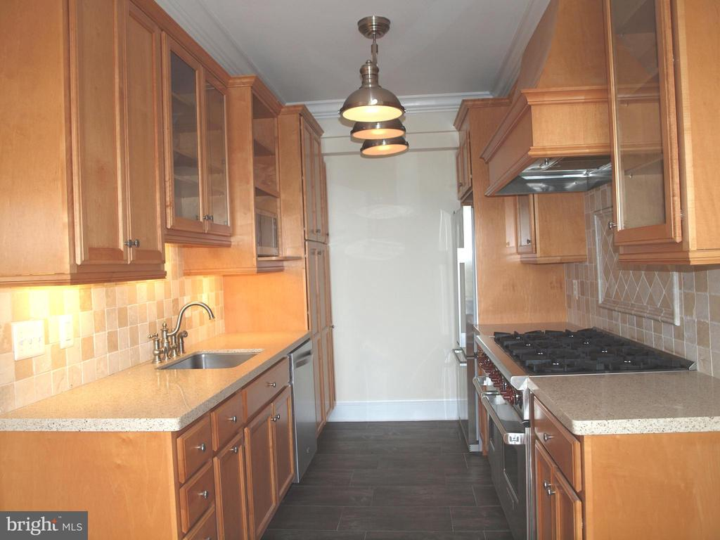 Lots of cabinets and upscale appliances - 4000 CATHEDRAL AVE NW #806B, WASHINGTON