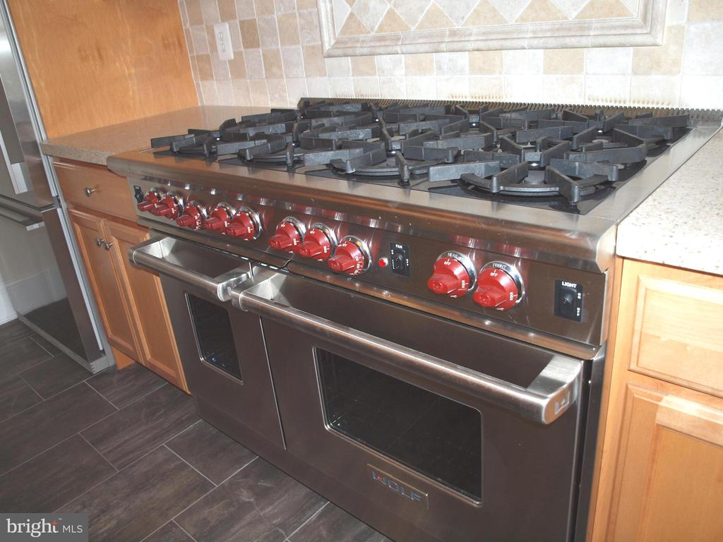 Fantastic chef's stove - 4000 CATHEDRAL AVE NW #806B, WASHINGTON