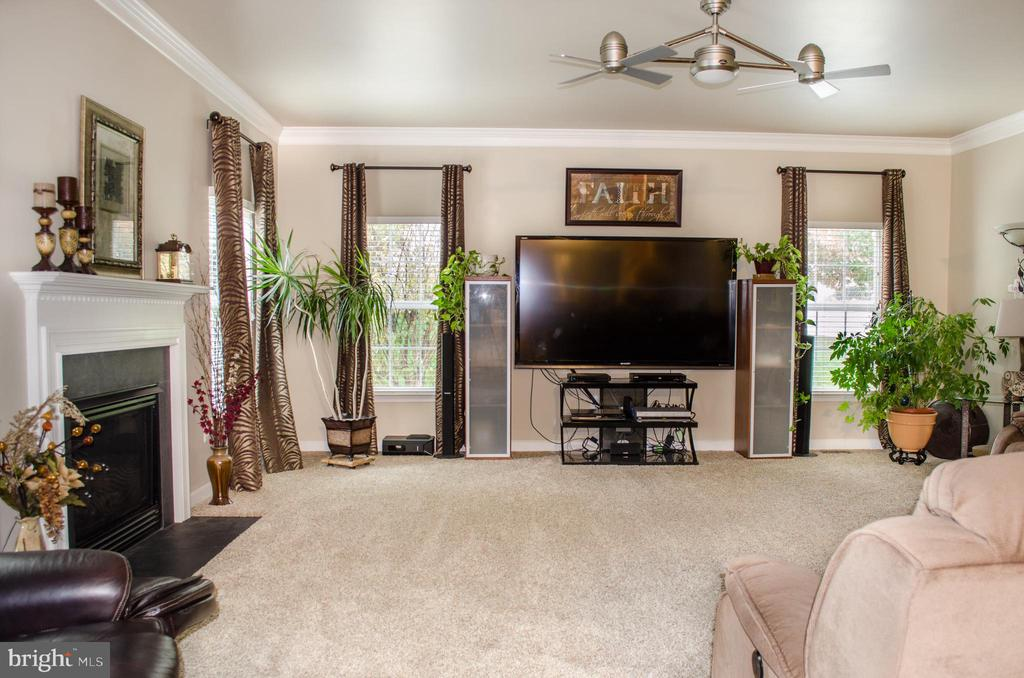 Bright main level family room, newer carpet - 1808 GREYSENS FERRY CT, POINT OF ROCKS