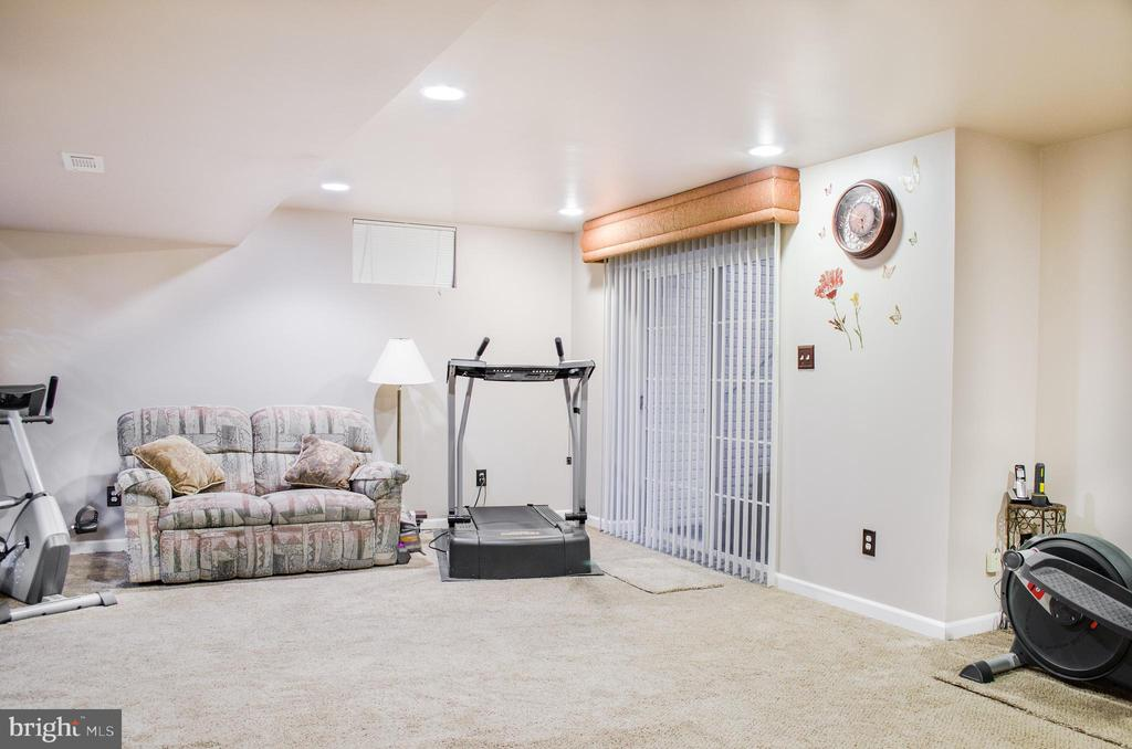 Lower level  multi-purpose area, walk out slider - 1808 GREYSENS FERRY CT, POINT OF ROCKS