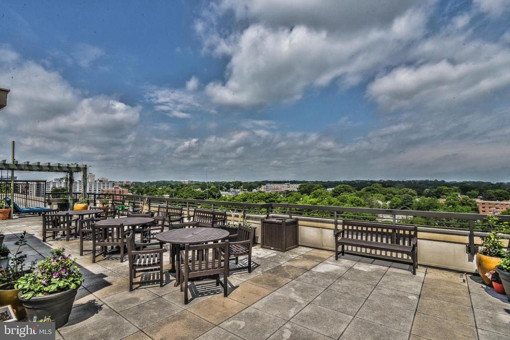 Gorgeous View! - 3625 10TH ST N #308, ARLINGTON
