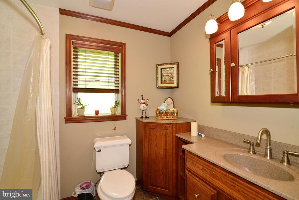 BATHROOM - 37730 LONG LN, LOVETTSVILLE