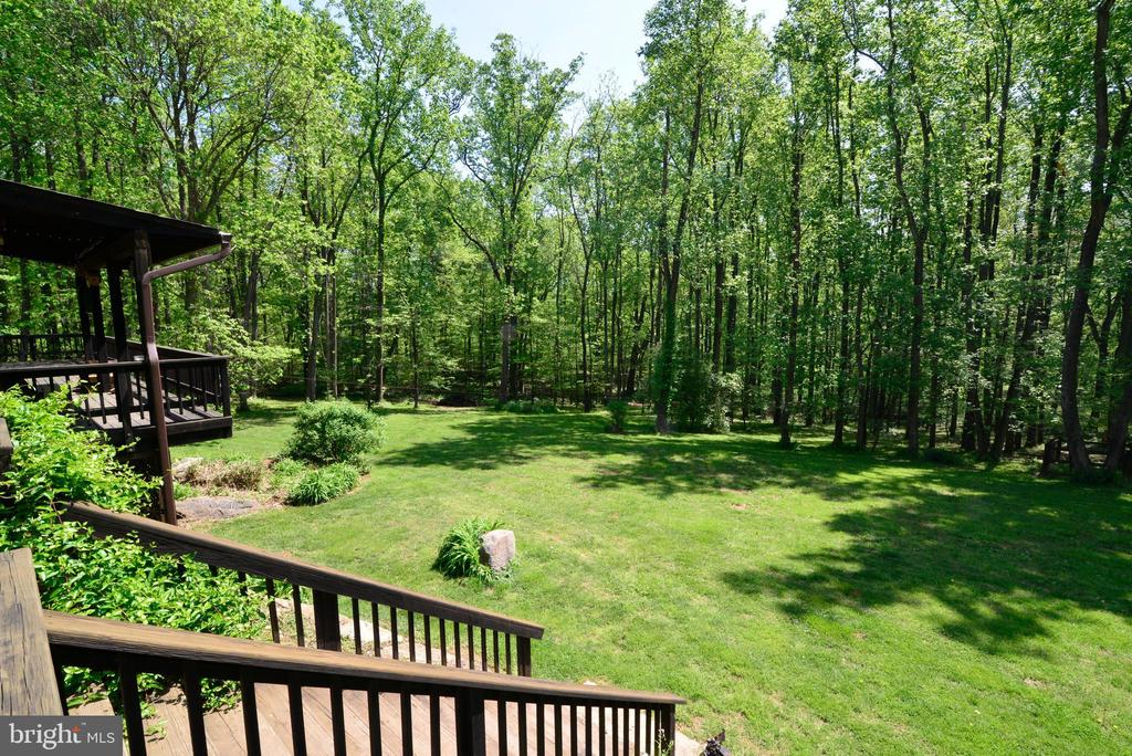 LAWN IS EXPANSIVE AND INVITING - 37730 LONG LN, LOVETTSVILLE