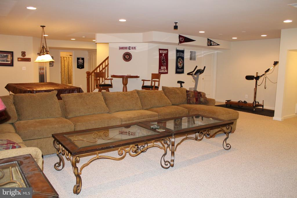 Relax in basement (Lg TV  &  Pool Table  convey) - 22791 VICKERY PARK DR, BRAMBLETON