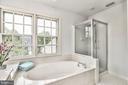 Master bathroom - 20214 BIRDSNEST PL, ASHBURN