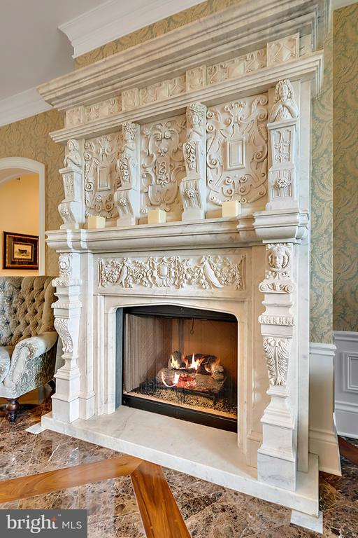 Hand Carved Italian Marble  Mantel in Entry - 12410 COVE LN, HUME