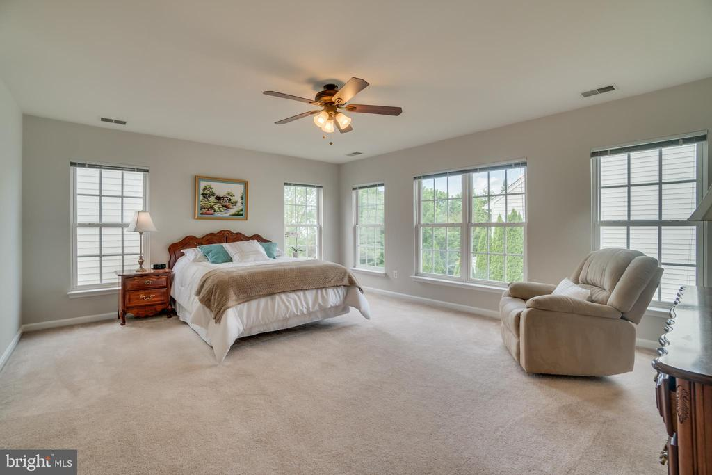 Master Bedroom - 24763 PRAIRIE GRASS DR, ALDIE