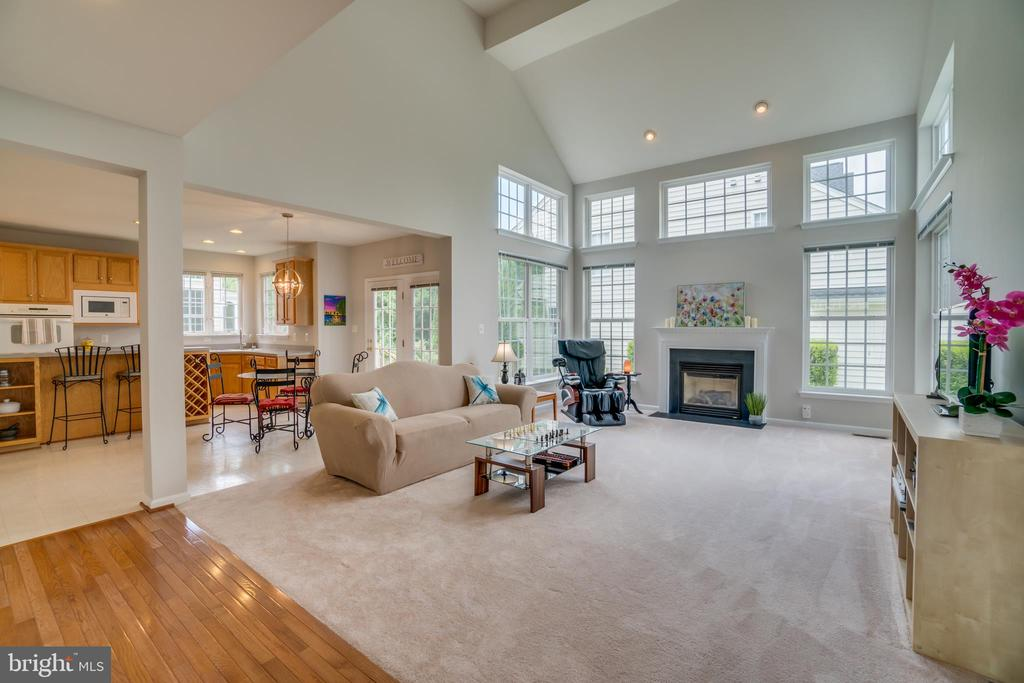 Family room - 24763 PRAIRIE GRASS DR, ALDIE